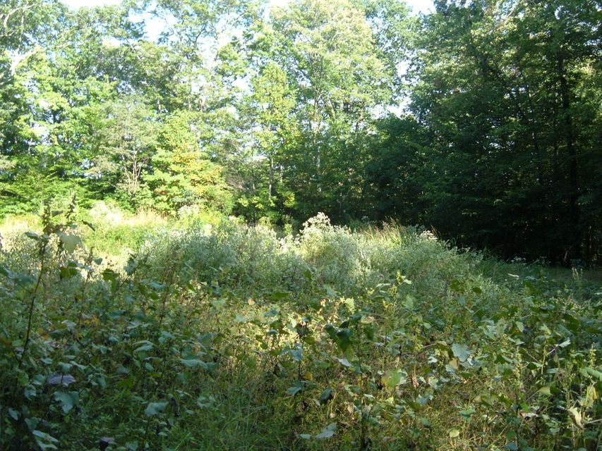 Land for Sale at Roe Lane Roe Lane Winfield, Tennessee 37841 United States