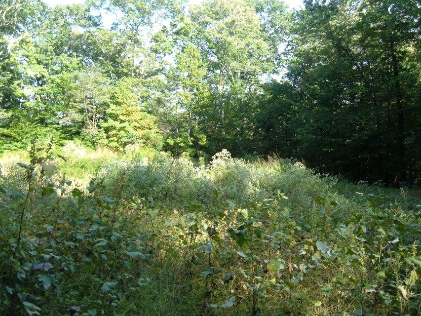 Земля для того Продажа на Roe Lane Roe Lane Winfield, Теннесси 37841 Соединенные Штаты