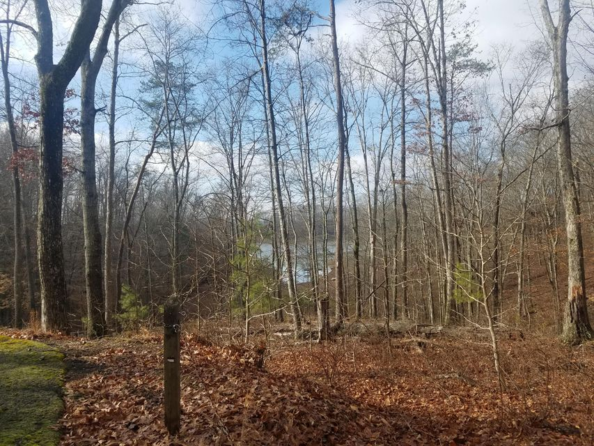 Additional photo for property listing at 216 Toqua Lane 216 Toqua Lane Mooresburg, Tennessee 37811 États-Unis