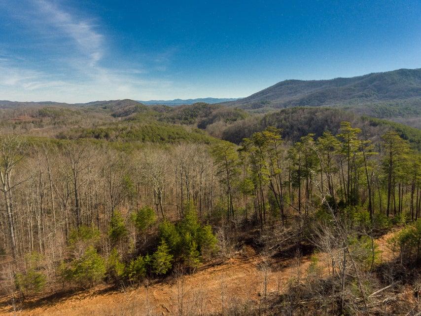 Земля для того Продажа на County Road 480 County Road 480 Etowah, Теннесси 37331 Соединенные Штаты