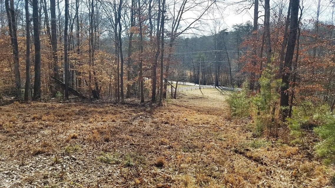 土地,用地 为 销售 在 Marlow Circle Marlow Circle Clinton, 田纳西州 37716 美国