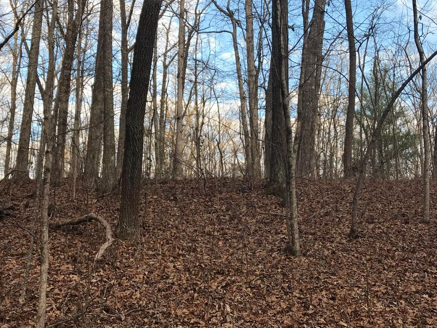 Additional photo for property listing at 2.74 Acres Valley View Road 2.74 Acres Valley View Road Pikeville, Tennessee 37367 États-Unis