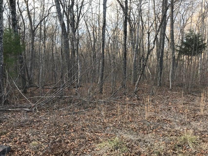 Terrain pour l Vente à 2.74 Acres Valley View Road 2.74 Acres Valley View Road Pikeville, Tennessee 37367 États-Unis