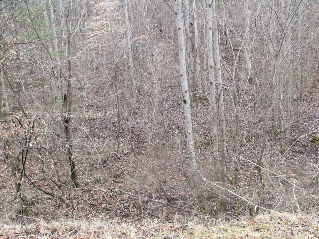 Additional photo for property listing at Three Point Road Three Point Road Vonore, Tennessee 37885 United States