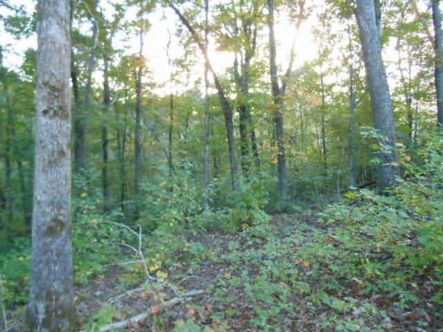 Additional photo for property listing at Lot 26 Sawmill Cove Road Lot 26 Sawmill Cove Road Rockwood, Tennessee 37854 États-Unis