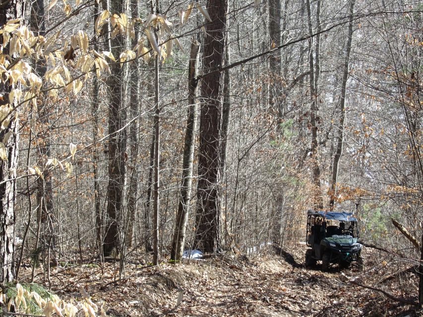 Land for Sale at 160 Acres Rock Hill Road 160 Acres Rock Hill Road Kyles Ford, Tennessee 37765 United States