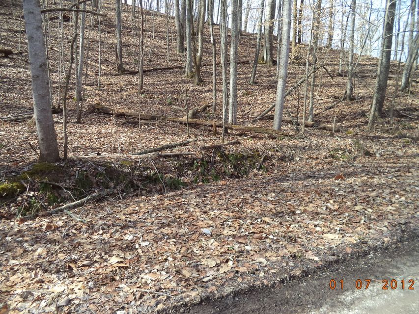 Land for Sale at Henson Lane Henson Lane Helenwood, Tennessee 37755 United States