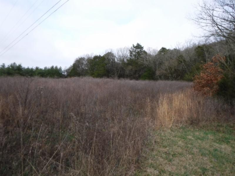 Land for Sale at 10.16 Holleman Bend Lane 10.16 Holleman Bend Lane Granville, Tennessee 38564 United States