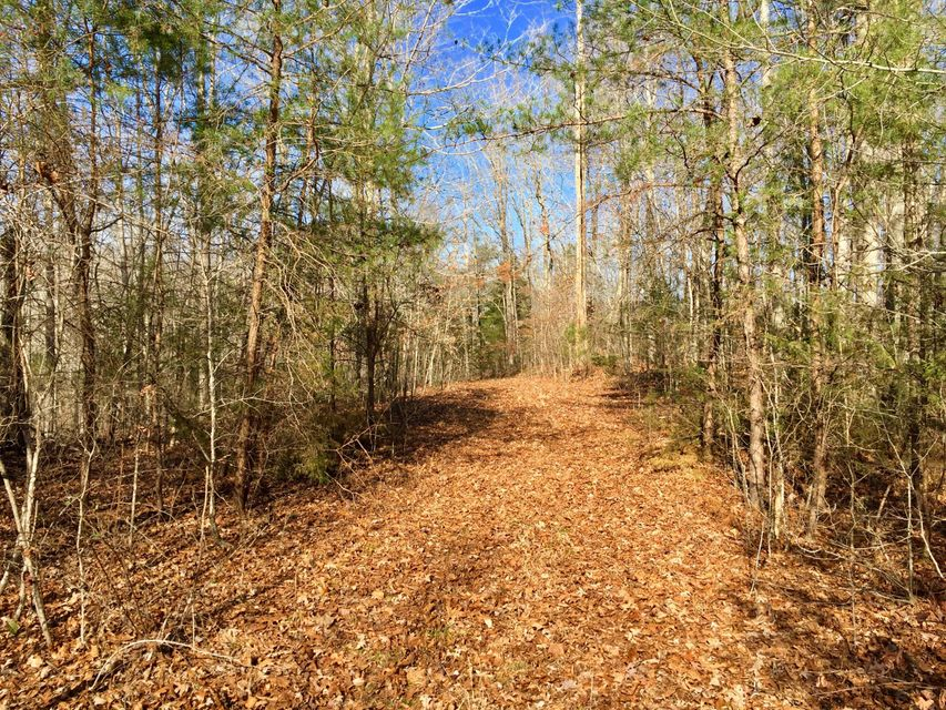 Land for Sale at Seven Knobs Road Road Seven Knobs Road Road Gainesboro, Tennessee 38562 United States