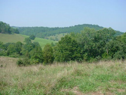Land for Sale at Lick Branch Road Lick Branch Road Ewing, Virginia 24248 United States