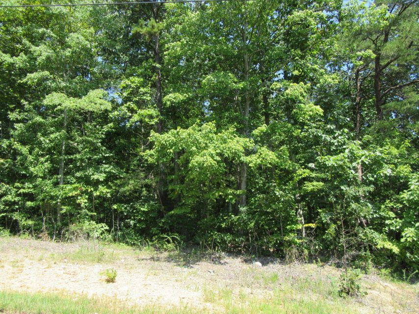 Земля для того Продажа на Lake City Hwy Lake City Hwy Rocky Top, Теннесси 37769 Соединенные Штаты