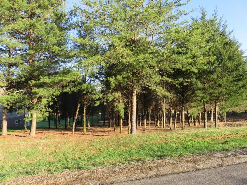 Additional photo for property listing at Lot 39 Dudi Trail Lot 39 Dudi Trail Vonore, Tennessee 37885 États-Unis