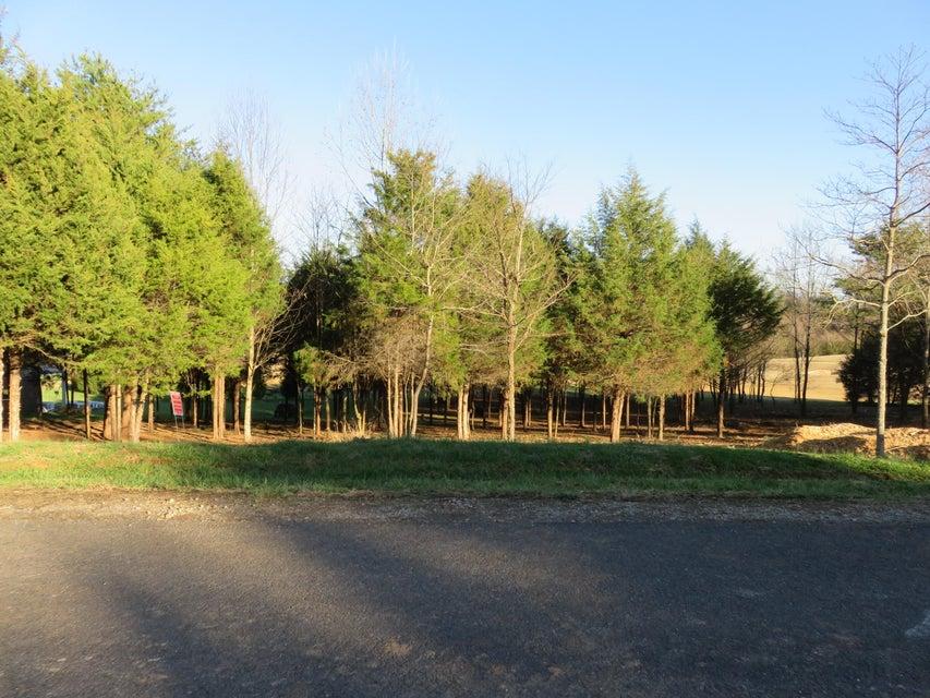 Terrain pour l Vente à Lot 39 Dudi Trail Lot 39 Dudi Trail Vonore, Tennessee 37885 États-Unis