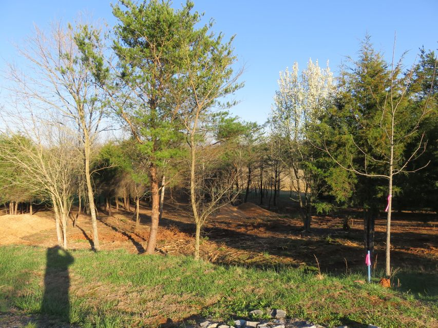 Additional photo for property listing at Lot 38 Dudi Tr Lot 38 Dudi Tr Vonore, Теннесси 37885 Соединенные Штаты
