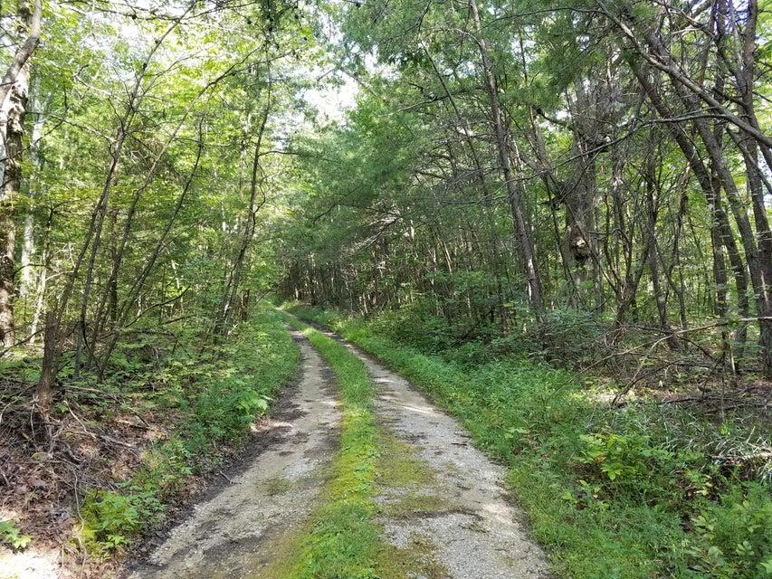 Земля для того Продажа на W Of Blackhouse Mtn Road W Of Blackhouse Mtn Road Jamestown, Теннесси 38556 Соединенные Штаты