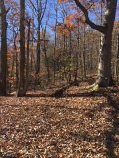 Terrain pour l Vente à 4352 SE Dalton Pike 4352 SE Dalton Pike Cleveland, Tennessee 37323 États-Unis