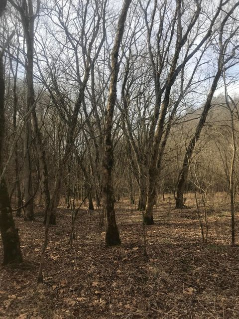 Land for Sale at Grissom Island Lane Grissom Island Lane Tazewell, Tennessee 37879 United States