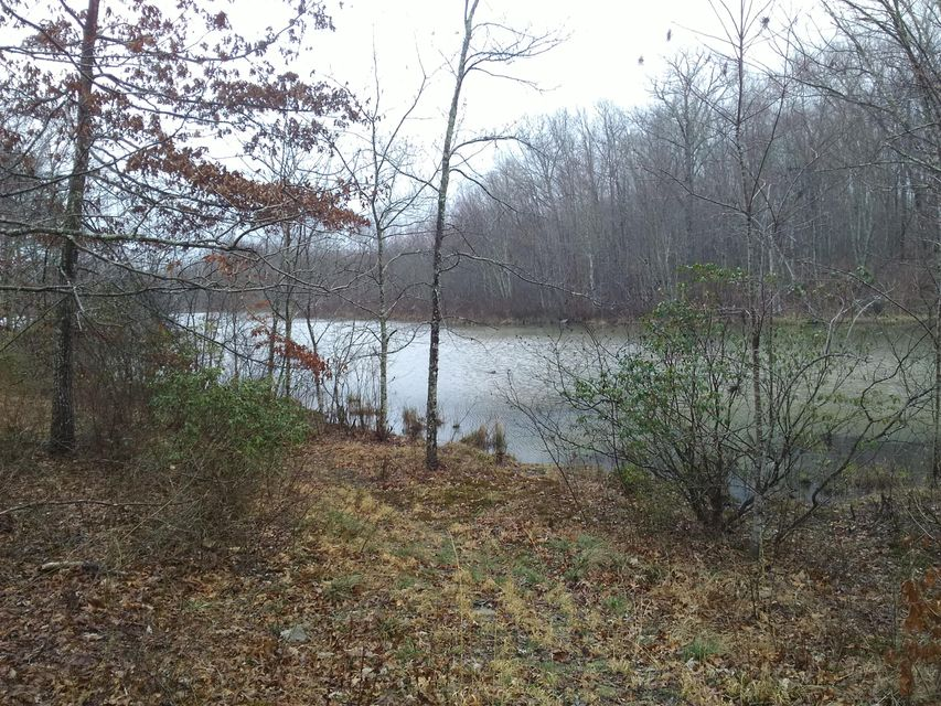 Additional photo for property listing at Dwyer Drive Dwyer Drive Crossville, Tennessee 38572 United States