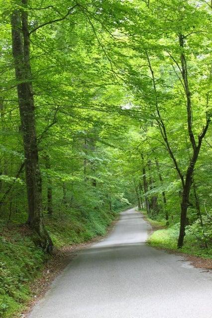 470 Oak Run Lane: