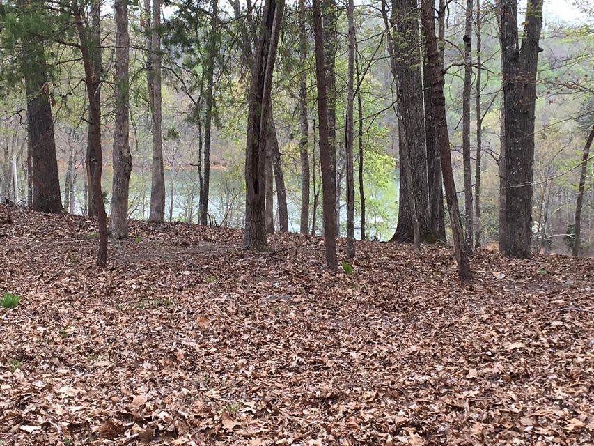 Big Pine Point: