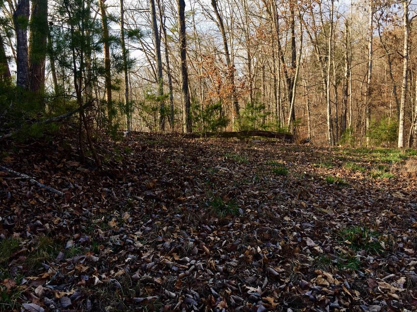 Lot 790 Beehive Rd: