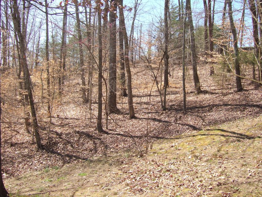 Lot 197 Lakeview Drive: