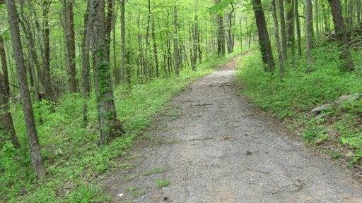 170 Norris Bend Lane: