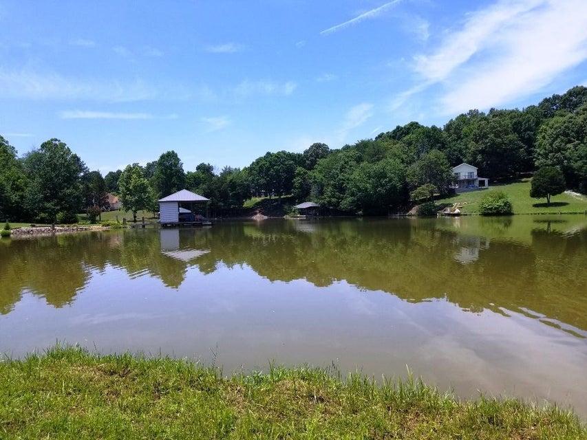 173 Bat Creek Shores Lane: