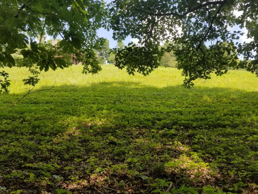 Lot 579 Tortoiseshell Circle: