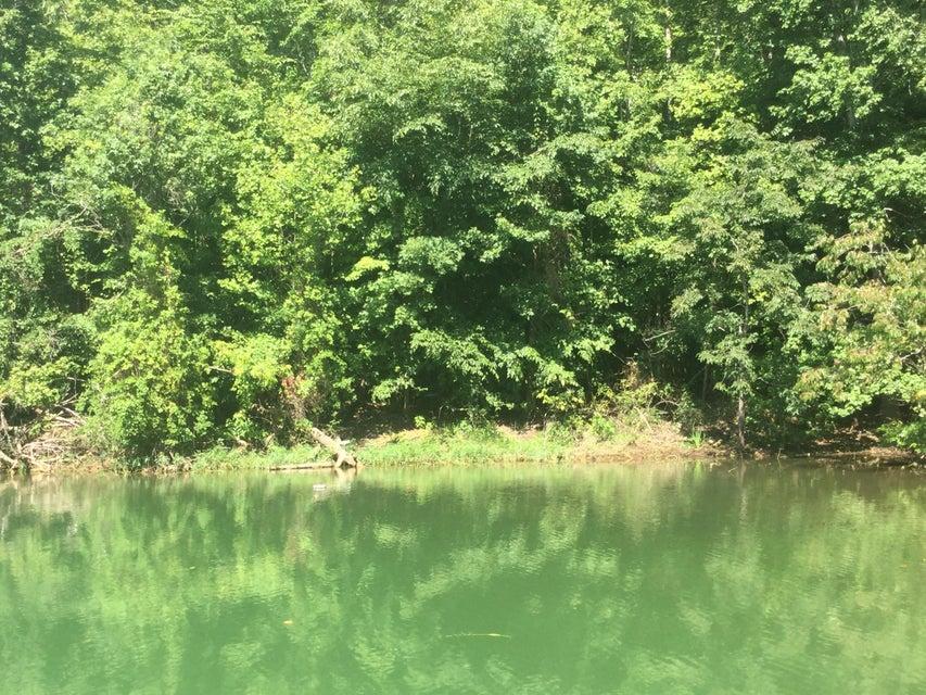 L- 98 Hidden Cove Ln: