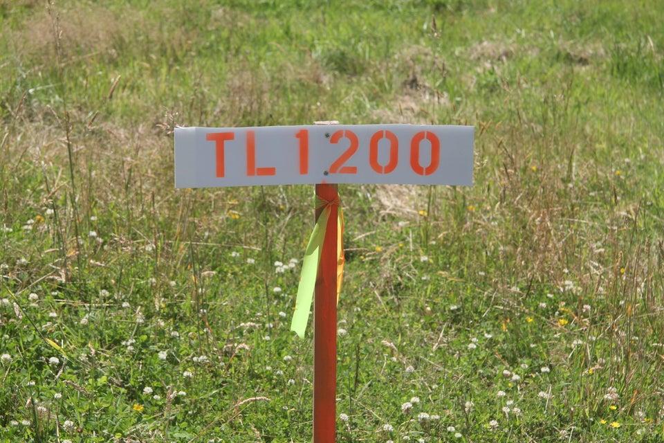 TL100 Waconda Beach Rd, Waldport, OR 97394 - looking south east