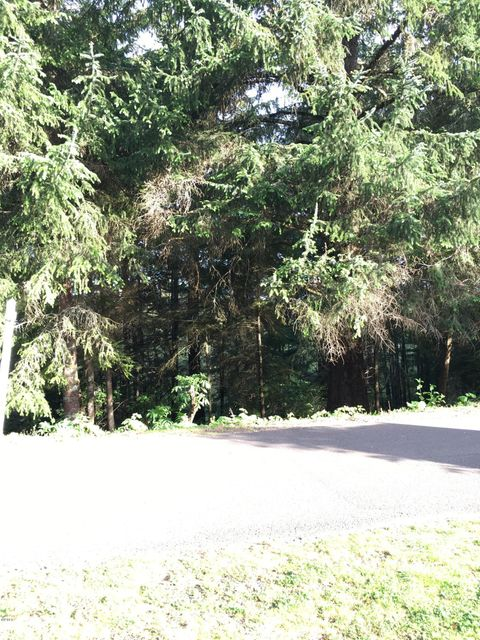810 NW Highland Cir, Waldport, OR 97394 - Land