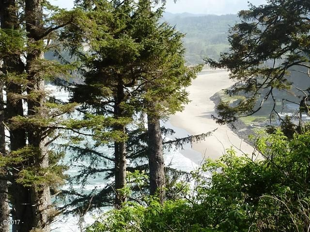 T/L 2000 South Beach Rd, Neskowin, OR 97149 - Chang View 2