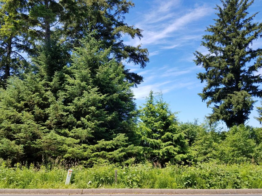 29 Sea Crest Way, Otter Rock, OR 97369 - Lot 29