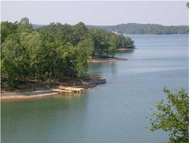 Lot  2 Lake Forrest Dr, Dadeville, AL 36853