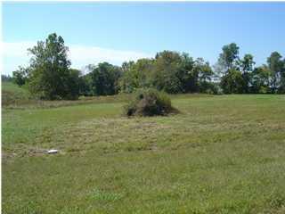 Land for Sale at 5 Shawnee Run Taylorsville, Kentucky 40071 United States