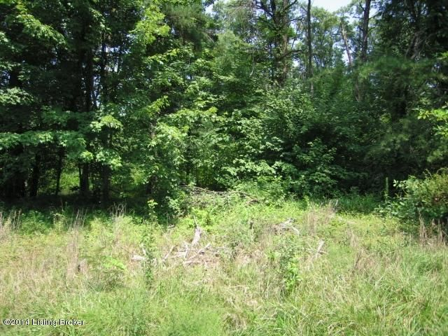 Additional photo for property listing at KNOBVIEW KNOBVIEW Lebanon Junction, Kentucky 40150 United States