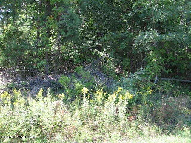 Land for Sale at 30 Worldview 30 Worldview Shepherdsville, Kentucky 40165 United States