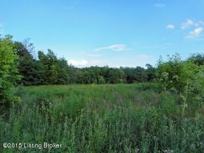 Land for Sale at 17 & 19 Kaeding Ghent, Kentucky 41045 United States
