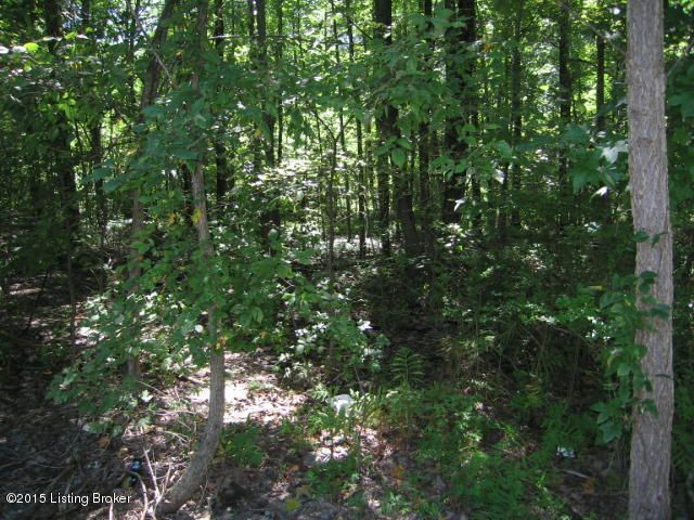 Land for Sale at 99 Hwy 1020 Brooks, Kentucky 40109 United States