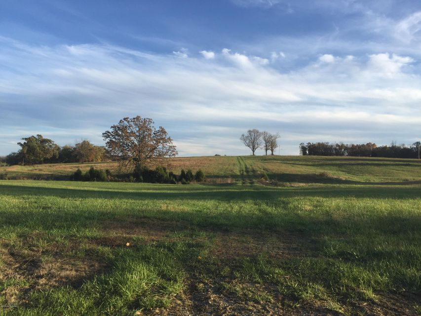 Land for Sale at 975 Kiper Leitchfield, Kentucky 42754 United States