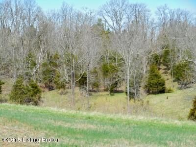 Additional photo for property listing at Starks  Bedford, Kentucky 40006 United States