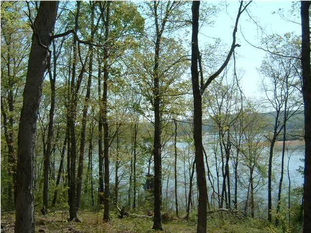 Additional photo for property listing at 85 River Run  Leitchfield, Kentucky 42754 United States