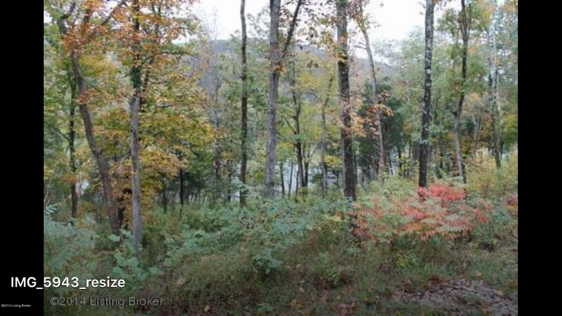 Additional photo for property listing at 690 Hodge  Cub Run, Kentucky 42729 United States