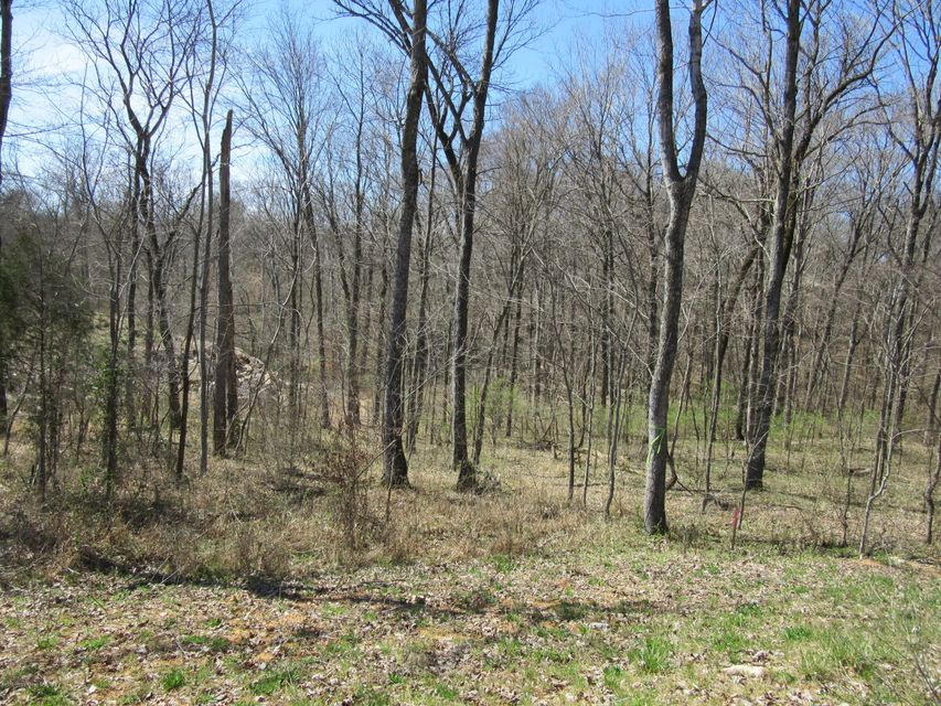 Land for Sale at N Preston Shepherdsville, Kentucky 40165 United States