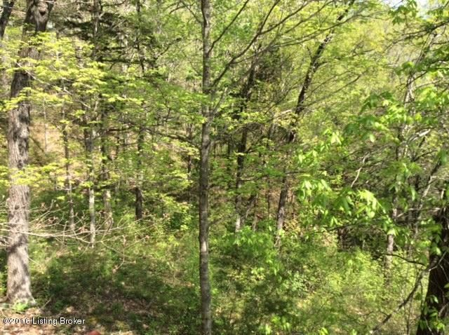 Land for Sale at #7 SANDY Jamestown, Kentucky 42629 United States