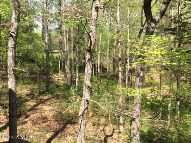 Additional photo for property listing at #7 SANDY  Jamestown, Kentucky 42629 United States
