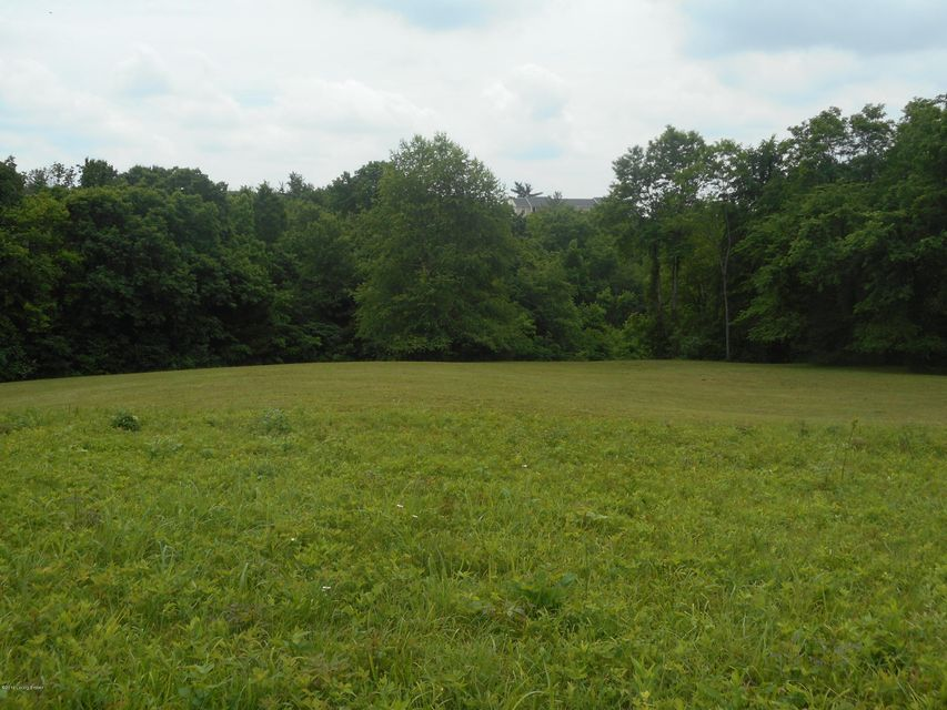 Land for Sale at 1-B Tanglewood 1-B Tanglewood Taylorsville, Kentucky 40071 United States