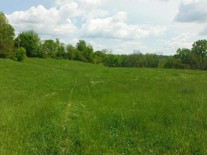 Land for Sale at Gest Pleasureville, Kentucky 40057 United States
