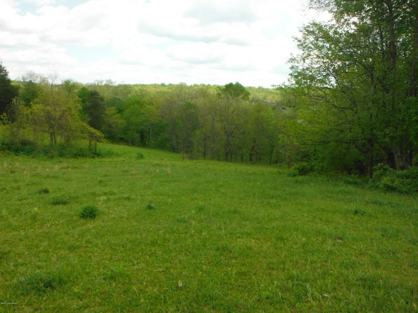 Additional photo for property listing at Gest  Pleasureville, Kentucky 40057 United States